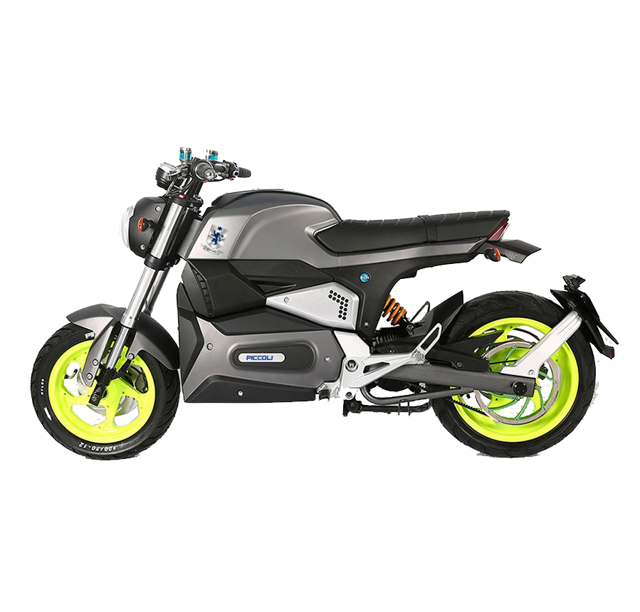 Piccoli Green technology Electric Motorcycle Pm6 lateral 2